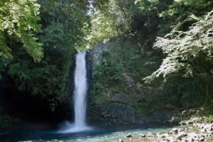 浄蓮の滝  シグマDP1s